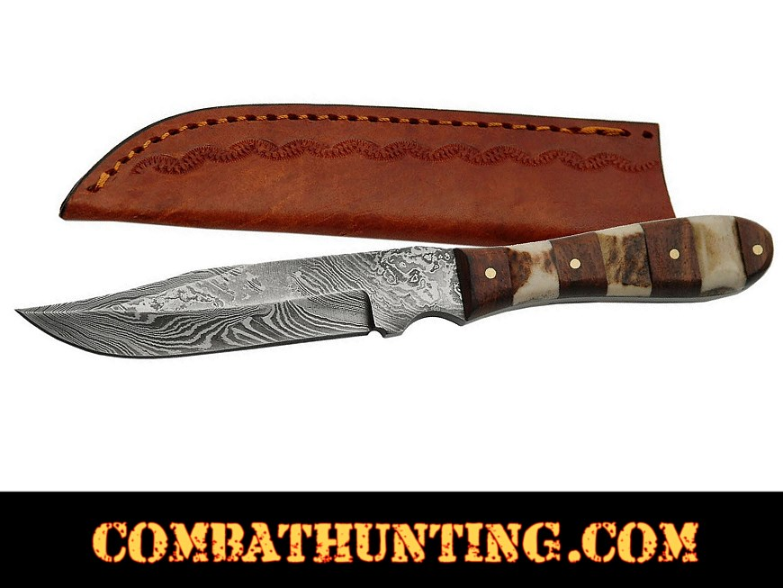 Damascus Steel Mini Hunting Knife With Stag Horn & Wood Handle style=