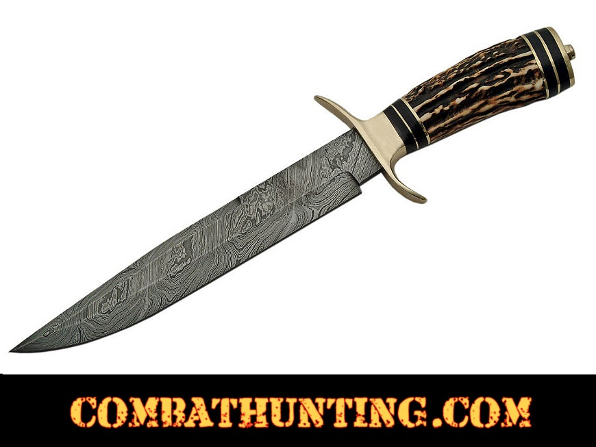 Damascus Steel Hunting Knife Stag Horn Handle style=