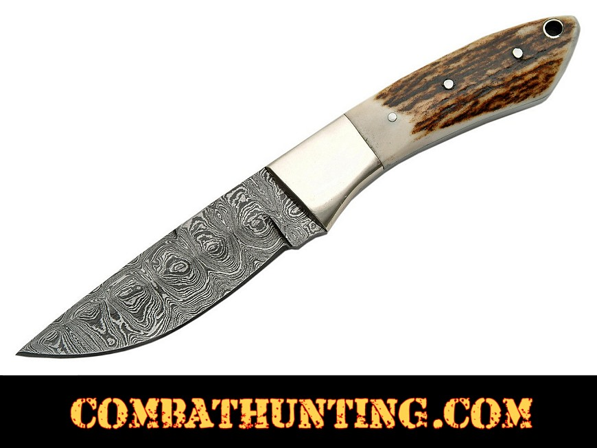 Damascus Steel Stag horn Handle Hunting Knife style=